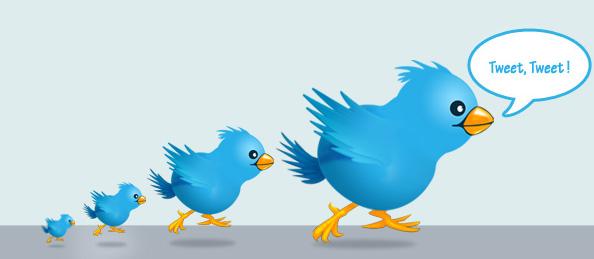 не читают твиттер