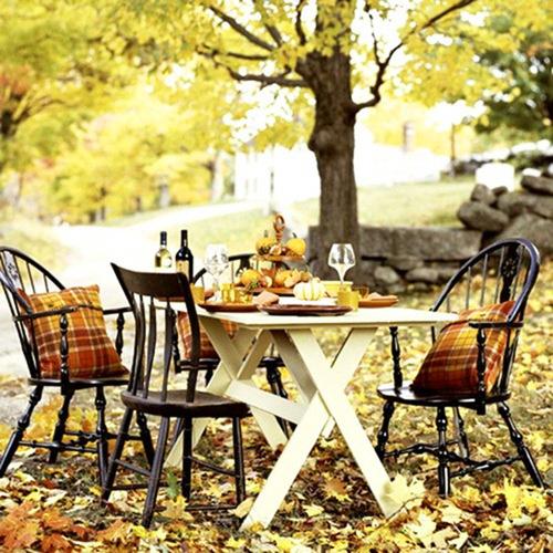 осенний пикник на природе