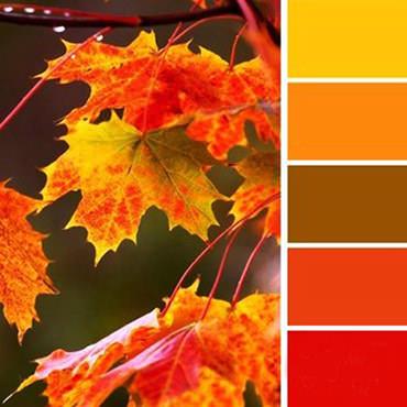 теплая цветовая гамма