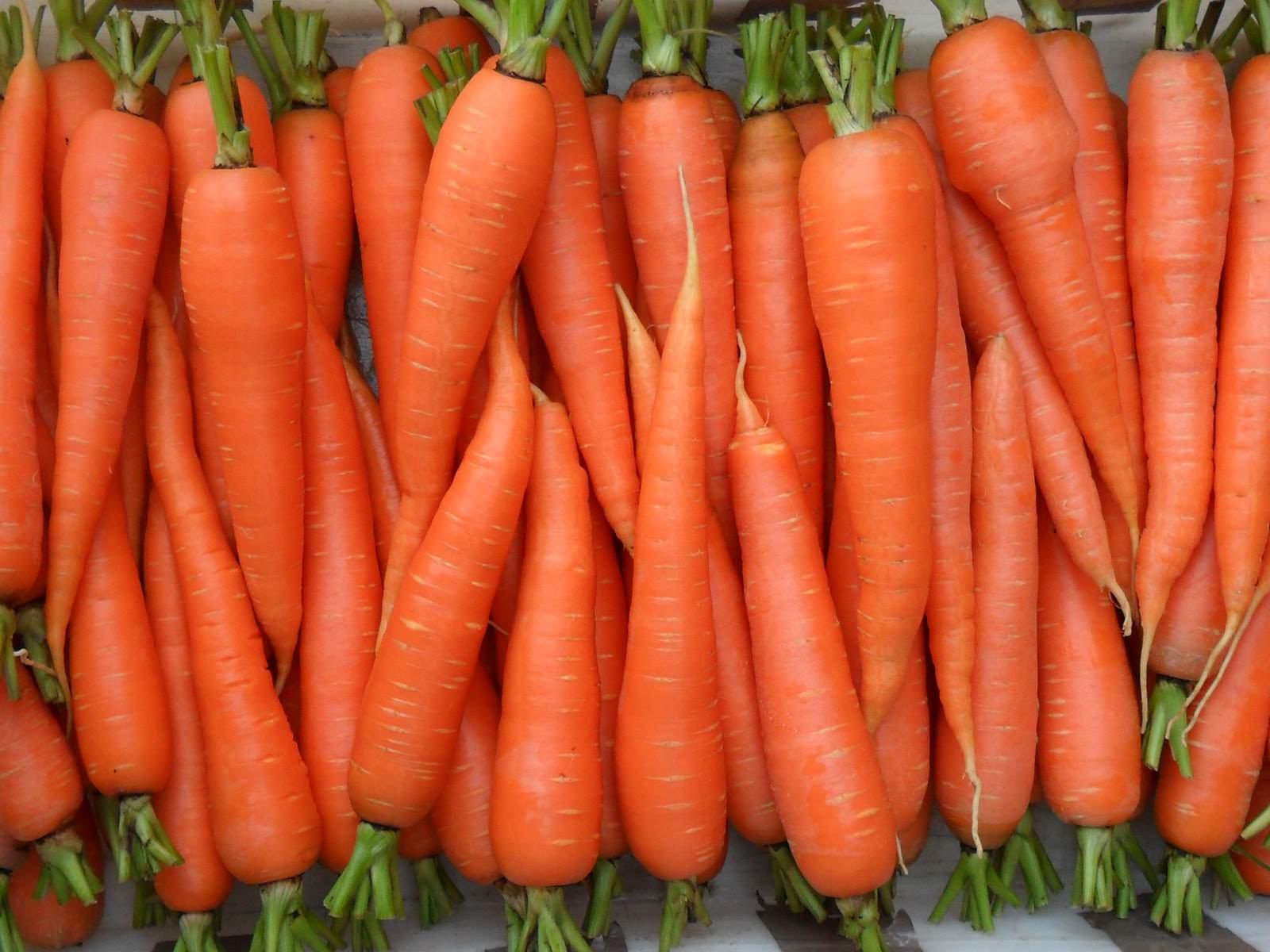 овощи морковь для правильного питания