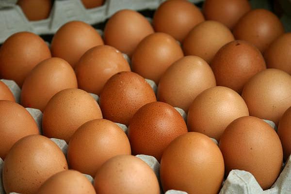 яйца  для правильного питания