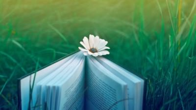 зачем нужно читать книги познавать мир