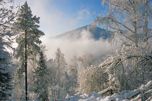 Prazdnovanie Novogo goda na Altae